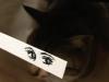el-dibujo-animado-caras-gato-14