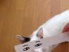 el-dibujo-animado-caras-gato-16