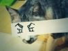 el-dibujo-animado-caras-gato-9