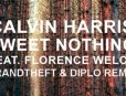 calvin-harris-sweet-nothing-florence-welch-diplo-grandtheft-traffffp