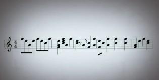 Escuchá música hecha por pájaros