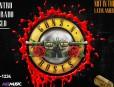 Guns N Roses copia