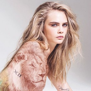 cara anti trump