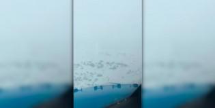 Un aterrizaje en medio de la nieve patagónica