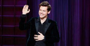 Acosaron sexualmente a Harry Styles en medio de un show y las redes sociales explotaron