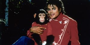 Una especialista acusa que Michael Jackson de haber atacado a Bubbles, su chimpancé