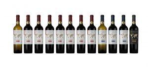Interblend: la nueva categoría de vinos que une a las personas del mundo